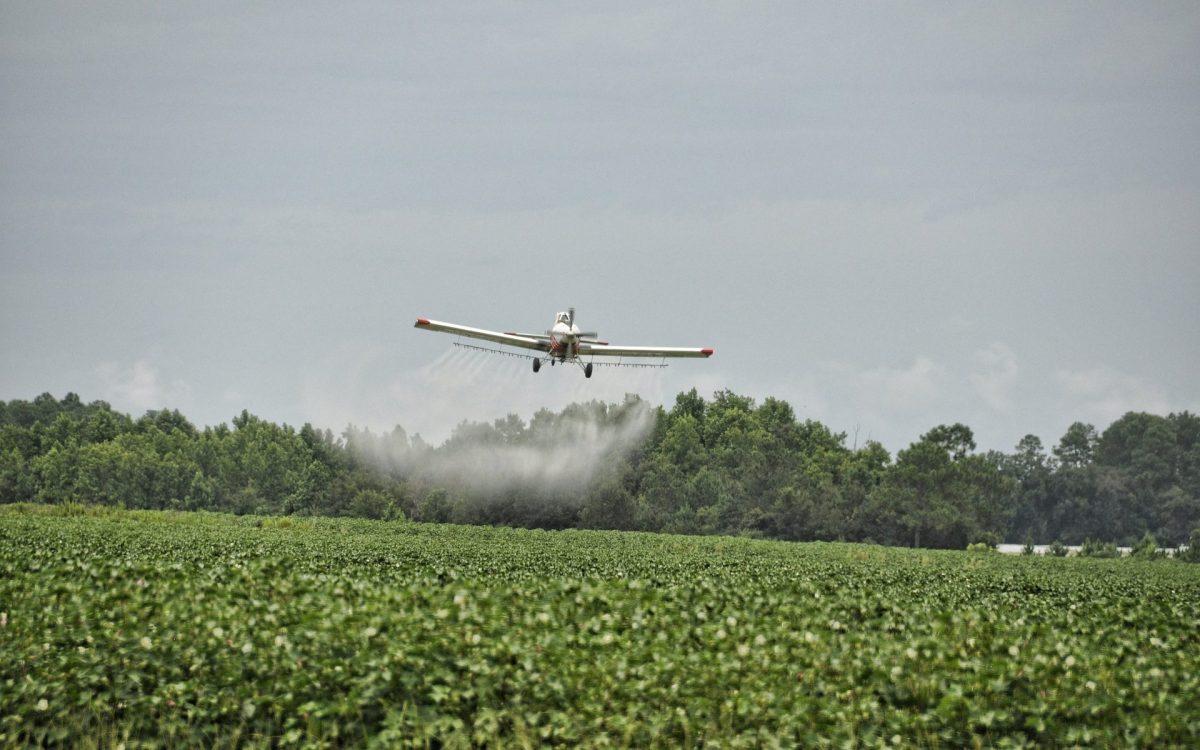 Agrotóxicos são lançados de avião
