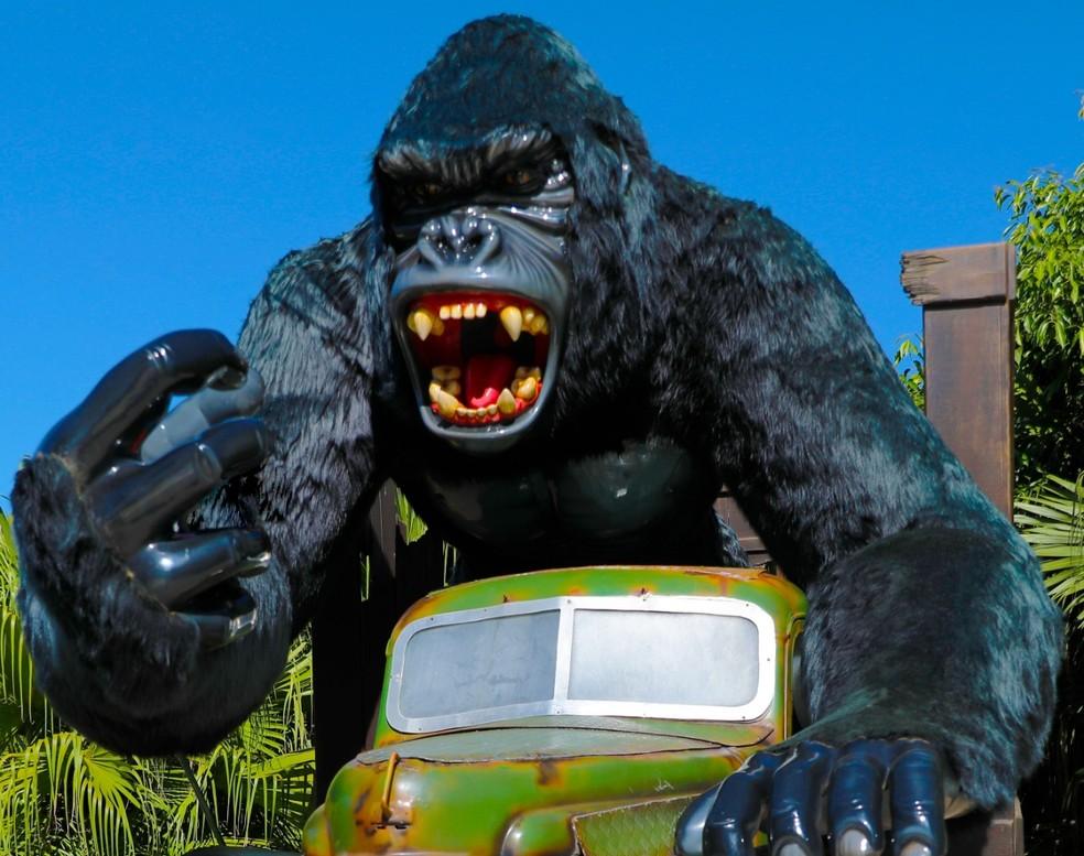 Atração em formato de gorila no Beto Carrero World (Foto: Divulgação/Beto Carrero World)